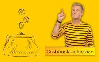 Вся правда о кэшбэке от Билайн: банковская карта Beeline и другие способы возврата денег