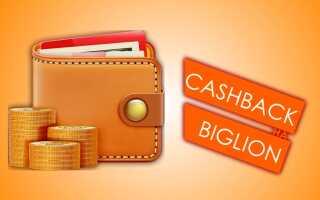 Верни максимум с кэшбэком от Биглион: условия начисления и вывода денег, отзывы