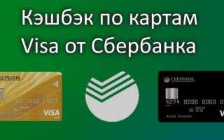 Получи максимум от карт Виза Сбербанка — кэшбэк до 20%